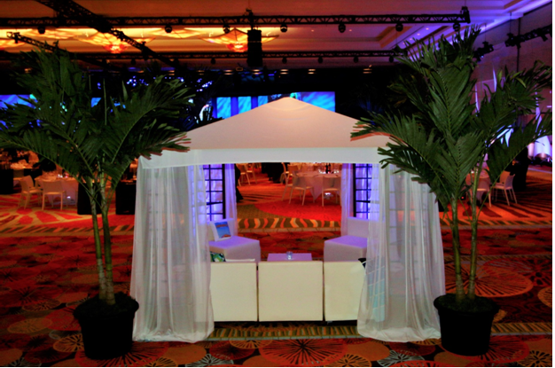10' x 10' White Canopy with Sheer Side Panels
