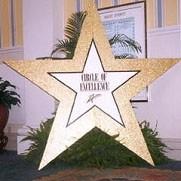 Gold Glittered Star - PR28 - Qty:4