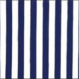Navy and White Cabana Stripe Chintz - LPR83