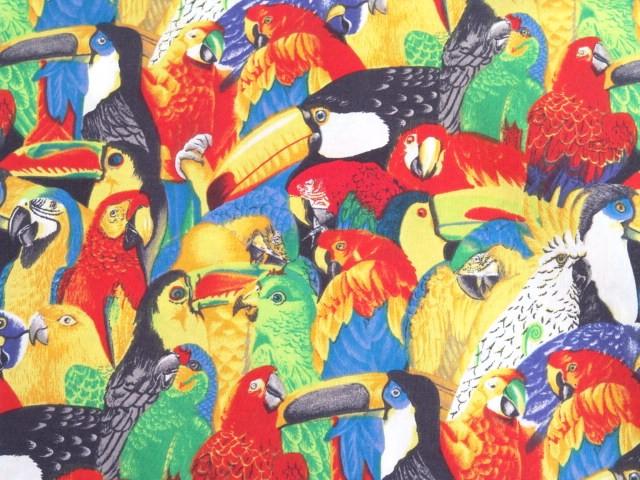 Parrot Print - Toucan