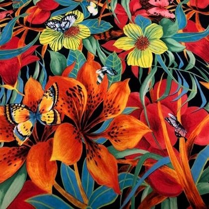 Tropical Butterflies - LPR58